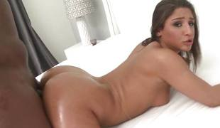 Airerose Abella Danger's First Chubby Black Blarney